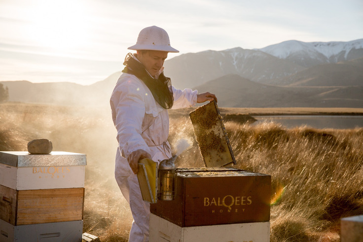 High Country Honey Only From New Zealand
