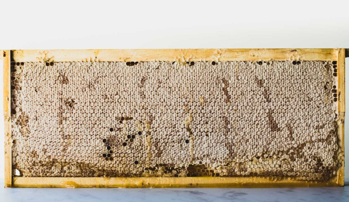 Wooden frame containing a honeycomb
